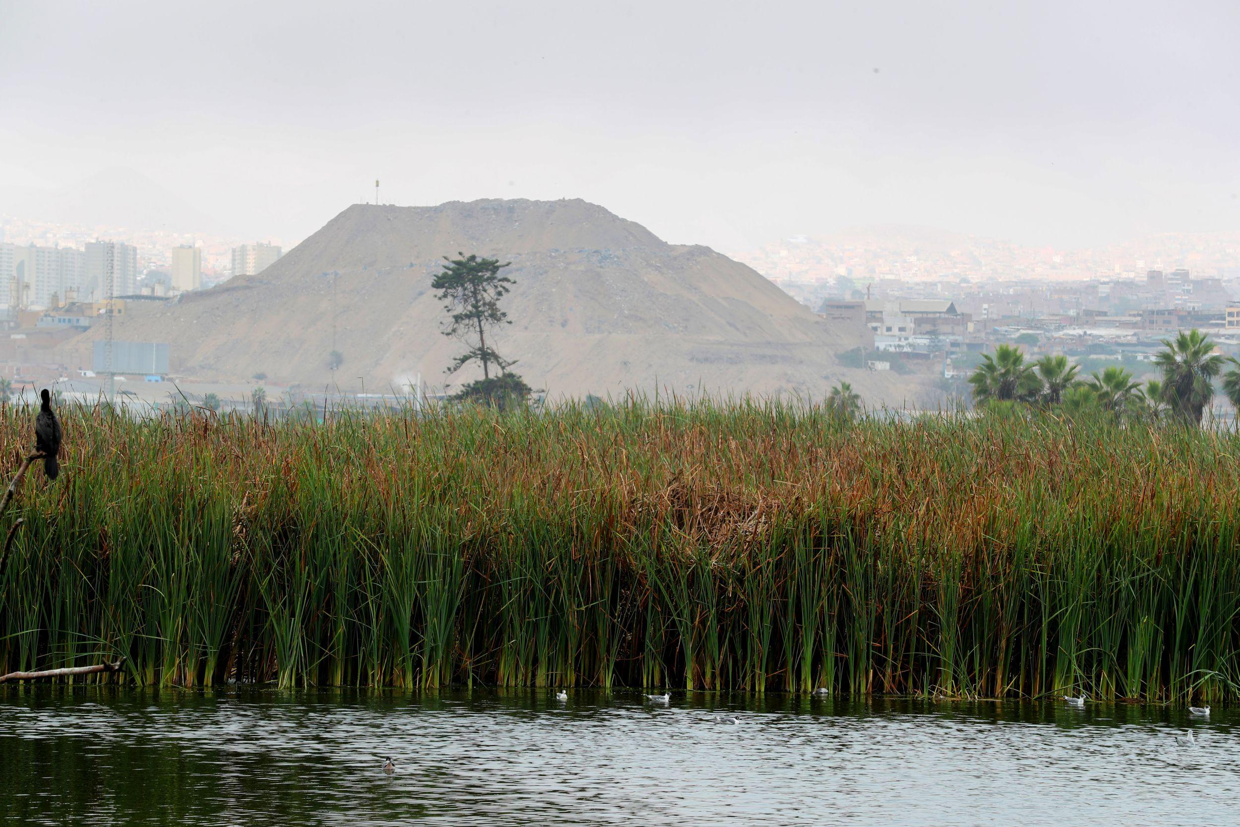 El Perú deberá invertir más de US$ 93 mil millones para ser carbono neutral en el 2050